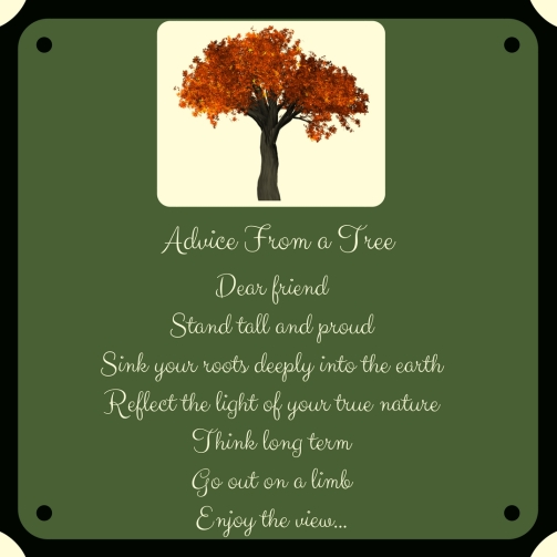 Advice From a Tree.3
